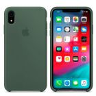 Чехол Soft Touch для Apple iPhone XR Cactus